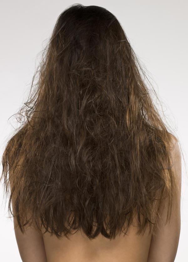 Картинка сухого волоса это символизировало
